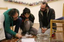 Hosting Transformation: Italy