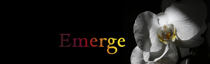 Emerge: post-retreat artshare