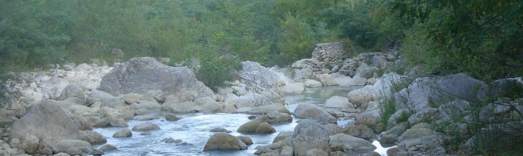 rivertime banner
